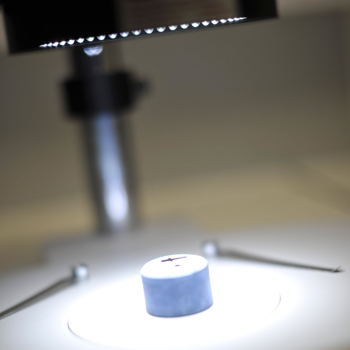 Stereo-microscope-3